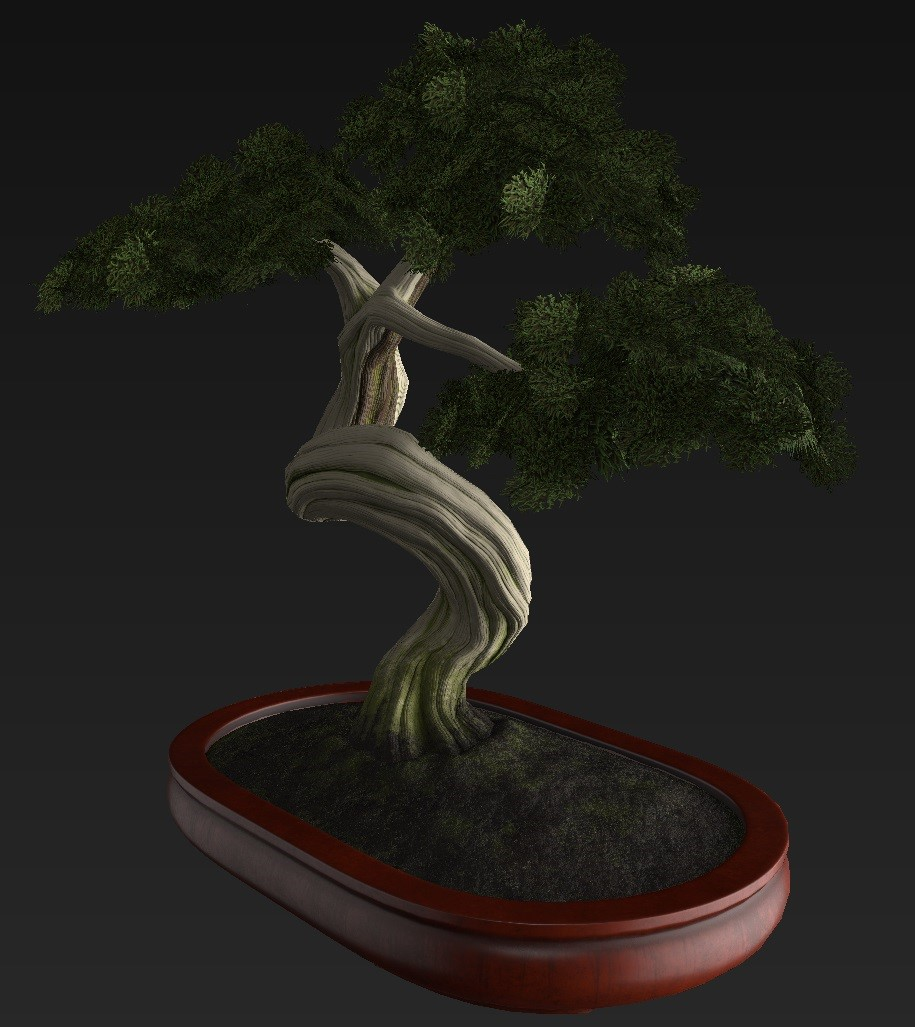Bonsai_Tree_30.jpg