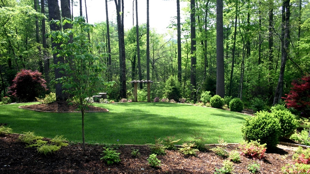 Landscape plants trees shrubs perennials and sod b b barns garden center landscape for A b lawn and garden