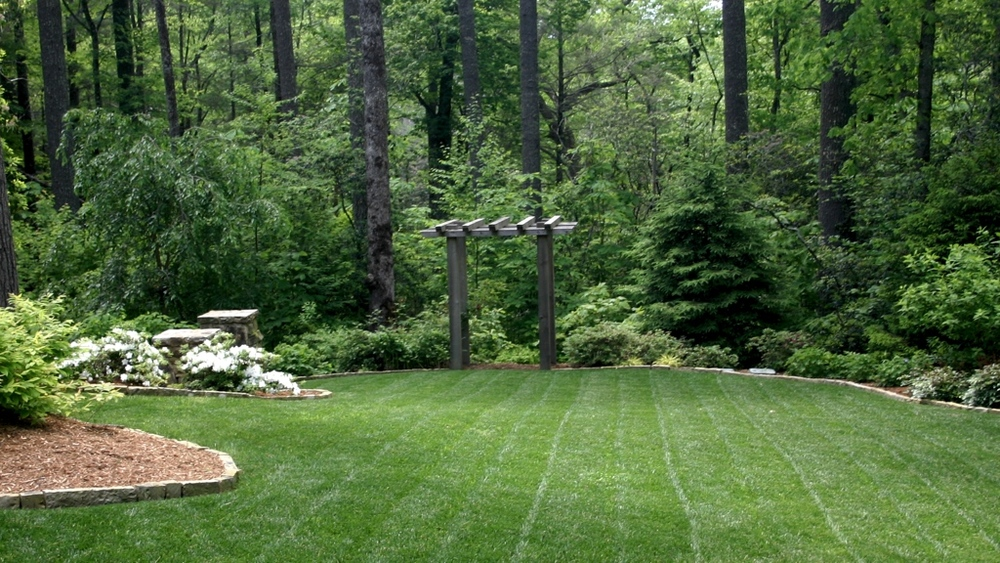 Landscape plants trees shrubs perennials and sod b for Tree and garden services