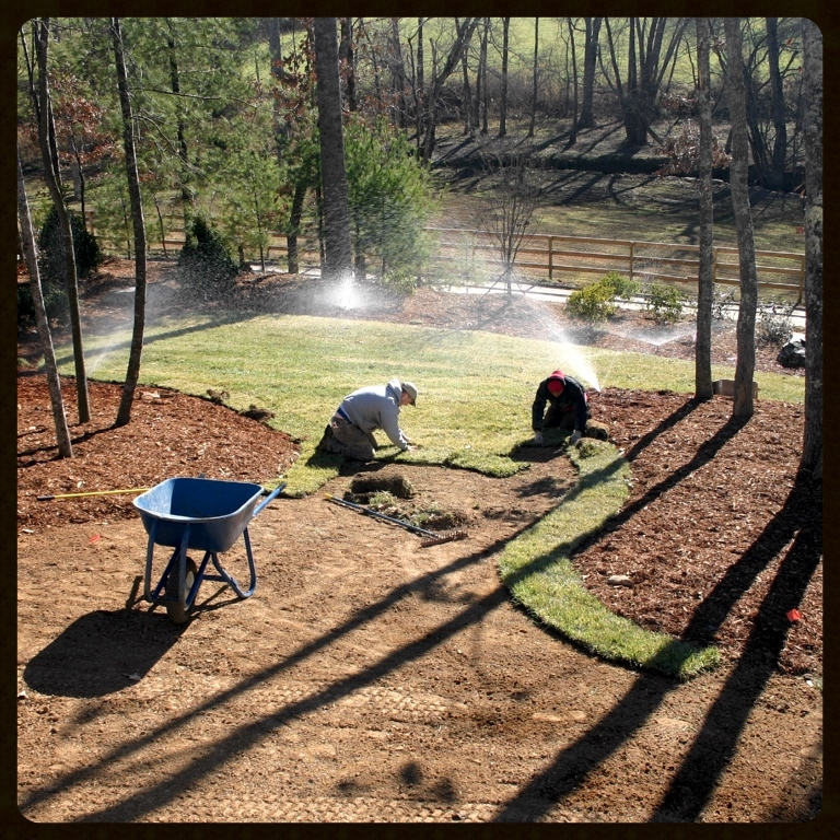 Irrigation system installed to provide watering for a newly sodded lawn