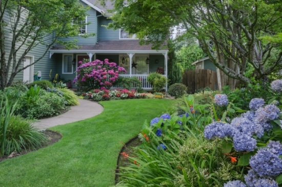 A sweep of lawn through a hydrangea garden is hard to resist. Lawns serve as pathways, play areas for children, entertainment spaces, or a place for pets to romp.
