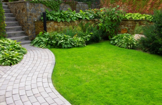 Lawns don't have to be huge for their evergreen color to give your perennials the right backdrop.