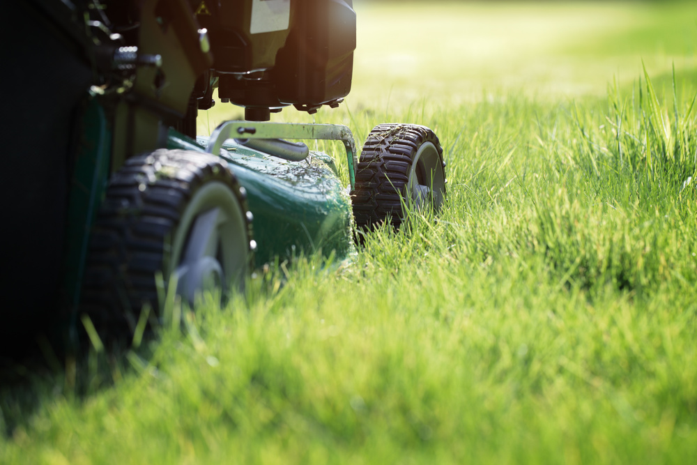 "When mowing, cut grass to height of 3 1/2."" Most notches on mowers don't correspond, so put mower on a flat, hard surface, open the side and measure from bottom of blade to the ground. Or simply raise blade to the highest level."