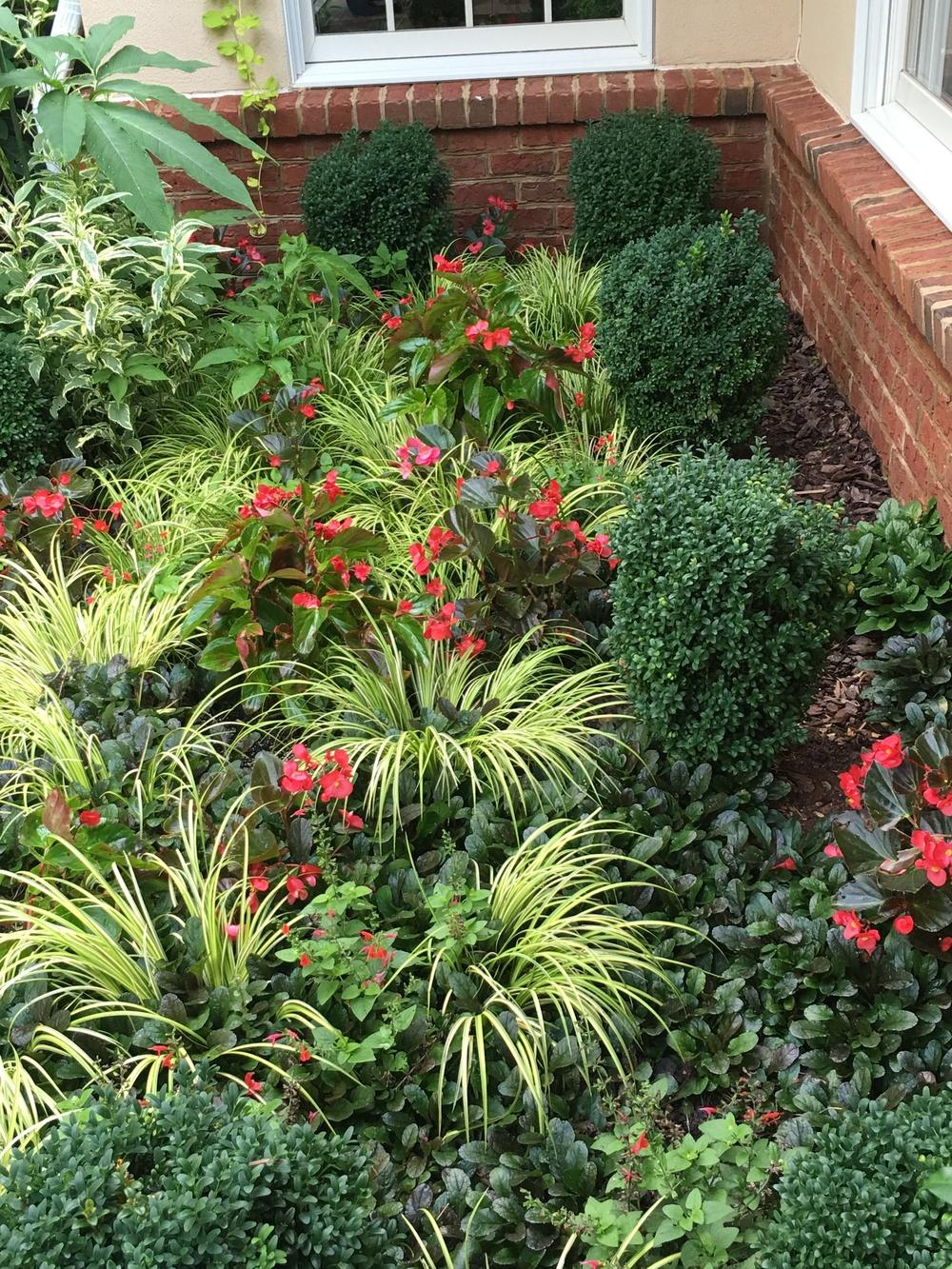 A small parterre garden.