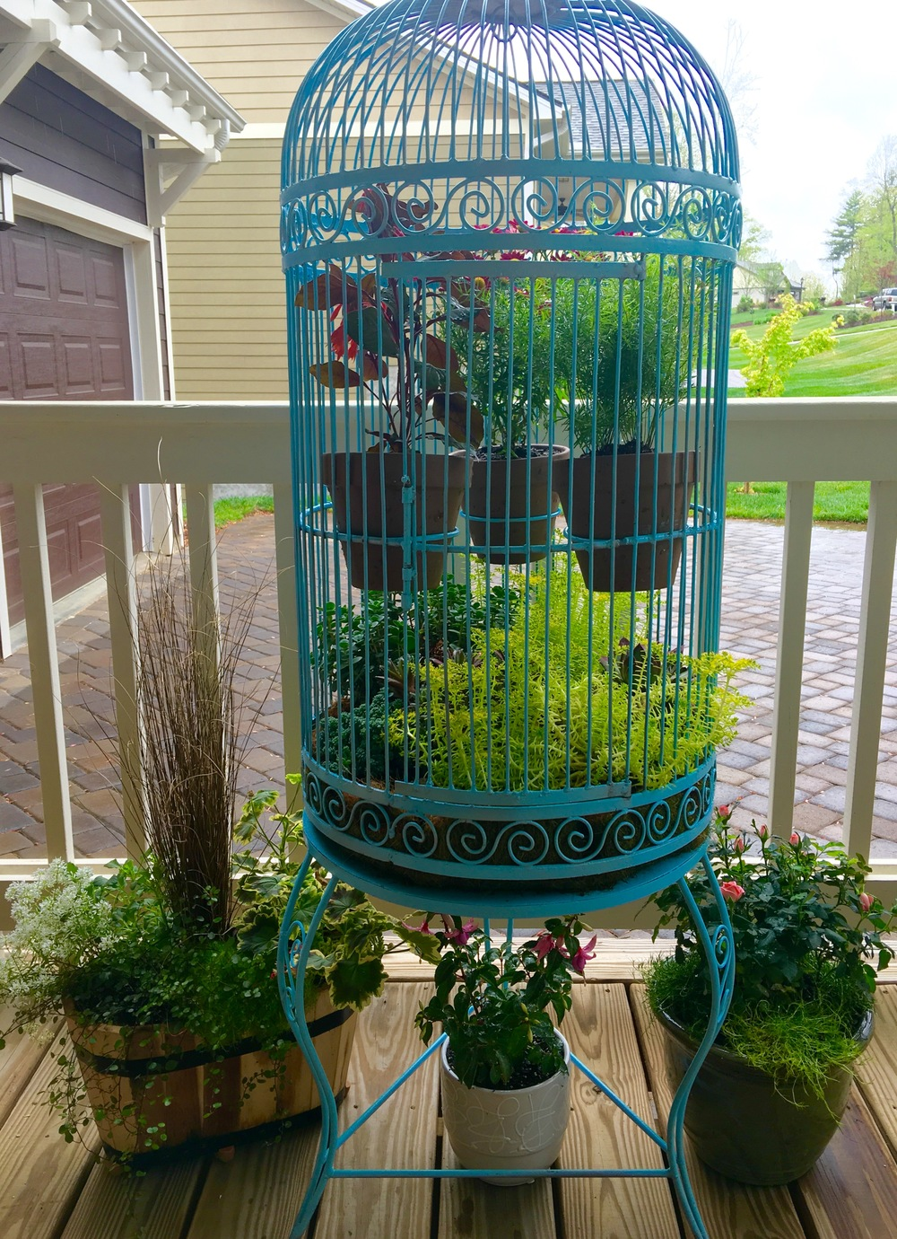 Antique birdcage used for succulents adds whimsy to the front porch.