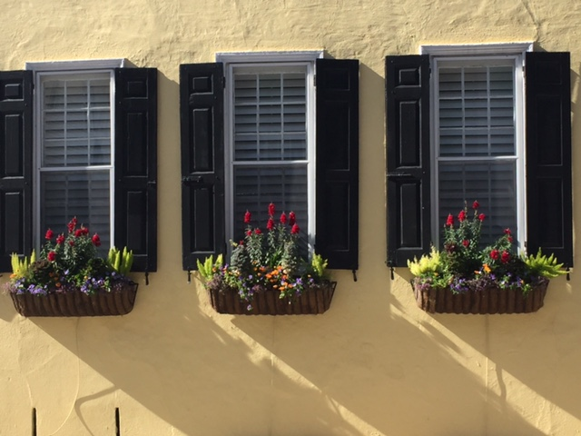 Using the same plant material in something as simple as your window boxes can help create unity in the garden.