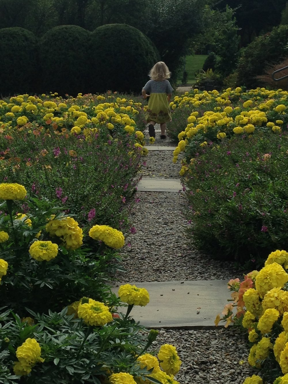 The prettiest little girl I know, my granddaughter, running through the quilt garden at the Arboretum.