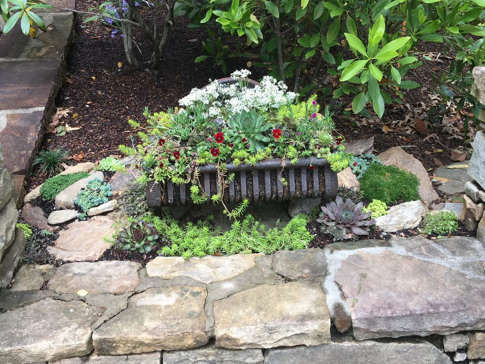 Antique log grate planted w/ succulents and annuals