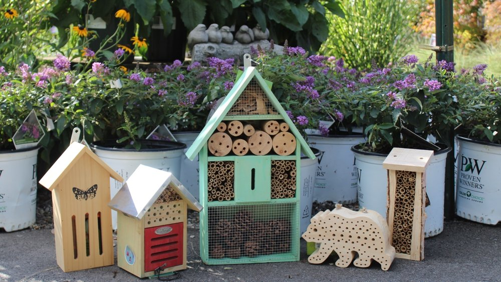 insect houses.jpg
