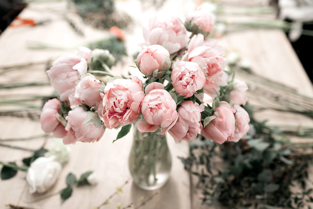Peonies may only bloom for a short time, but their blooms, fragrance and cut flowers make them deserving of a spot in the landscape.