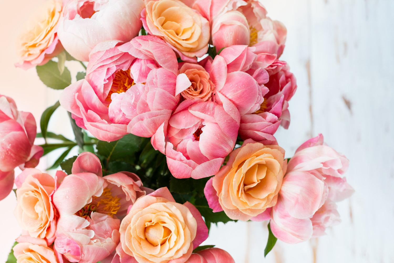 New year flowers- Peonies