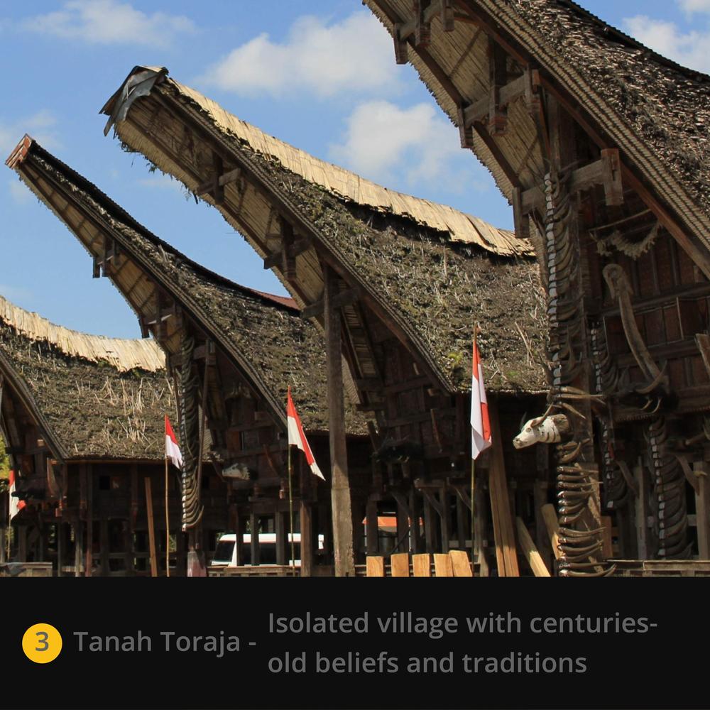 Tanah Toraja.jpg