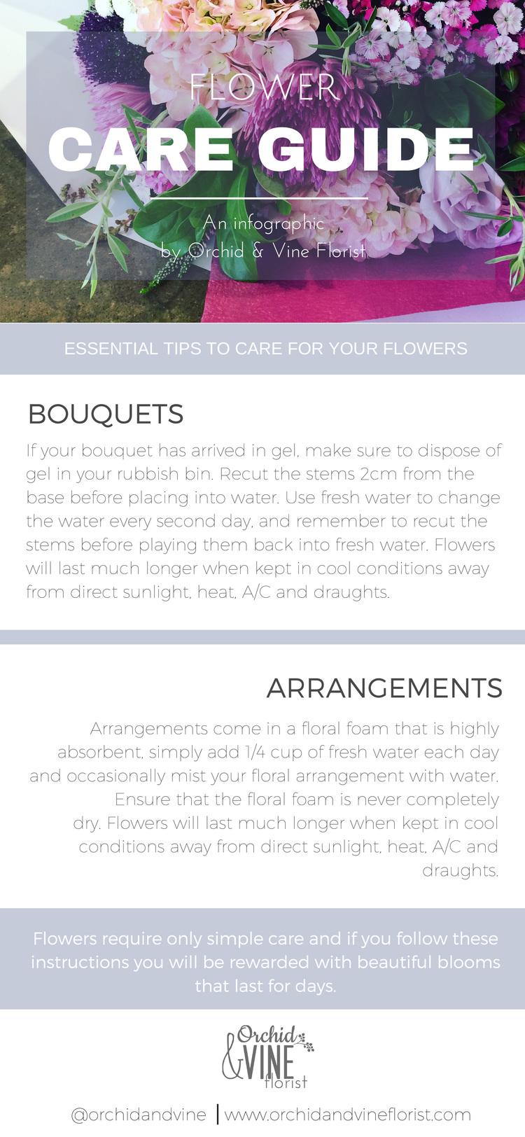 Orchid Vine Florist Flower Care Guide