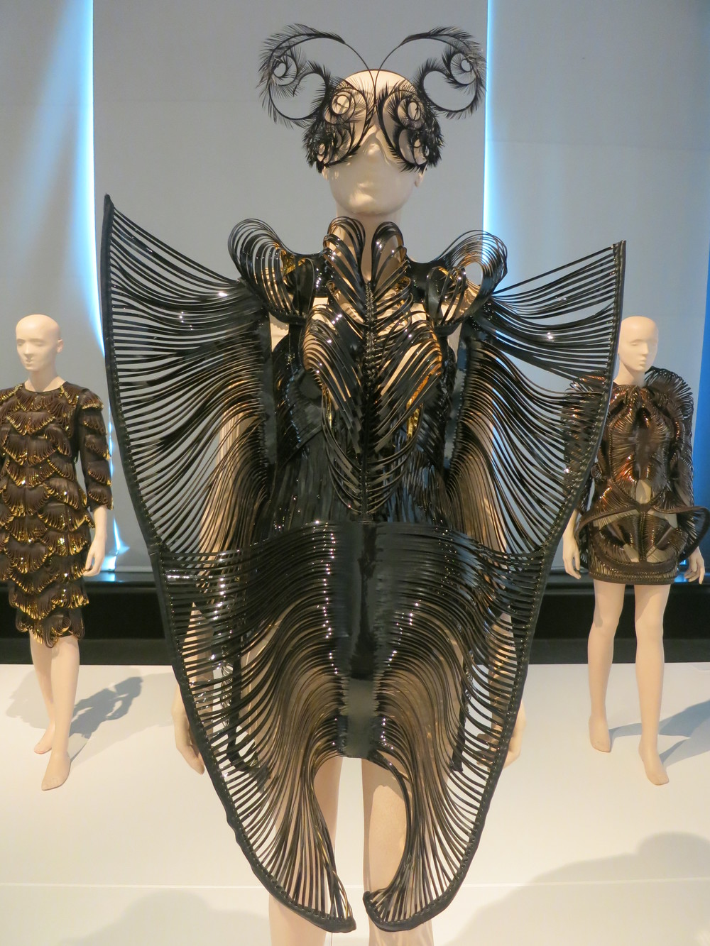 Iris van Herpen exhibition at the Calais Lace Museum 2013 - 'SYNESTHESIA' 2010