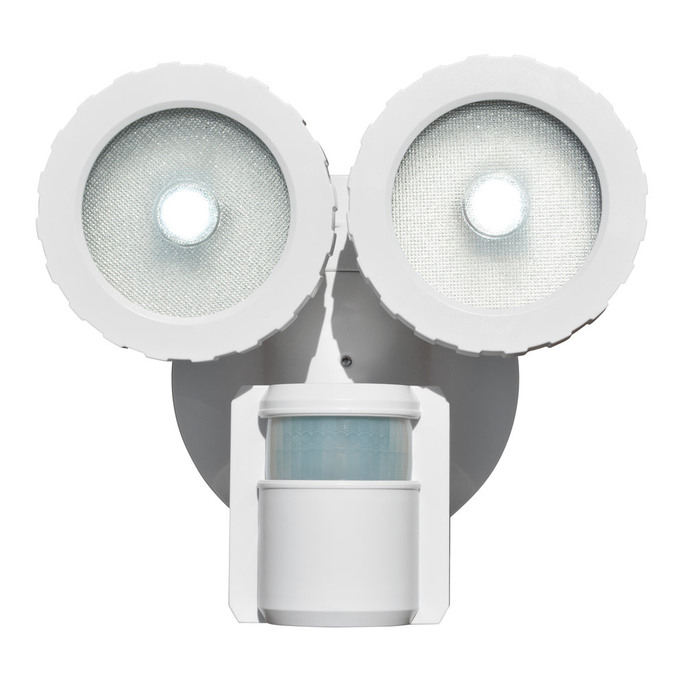 NL-DSBT Solar Security Light - Front View