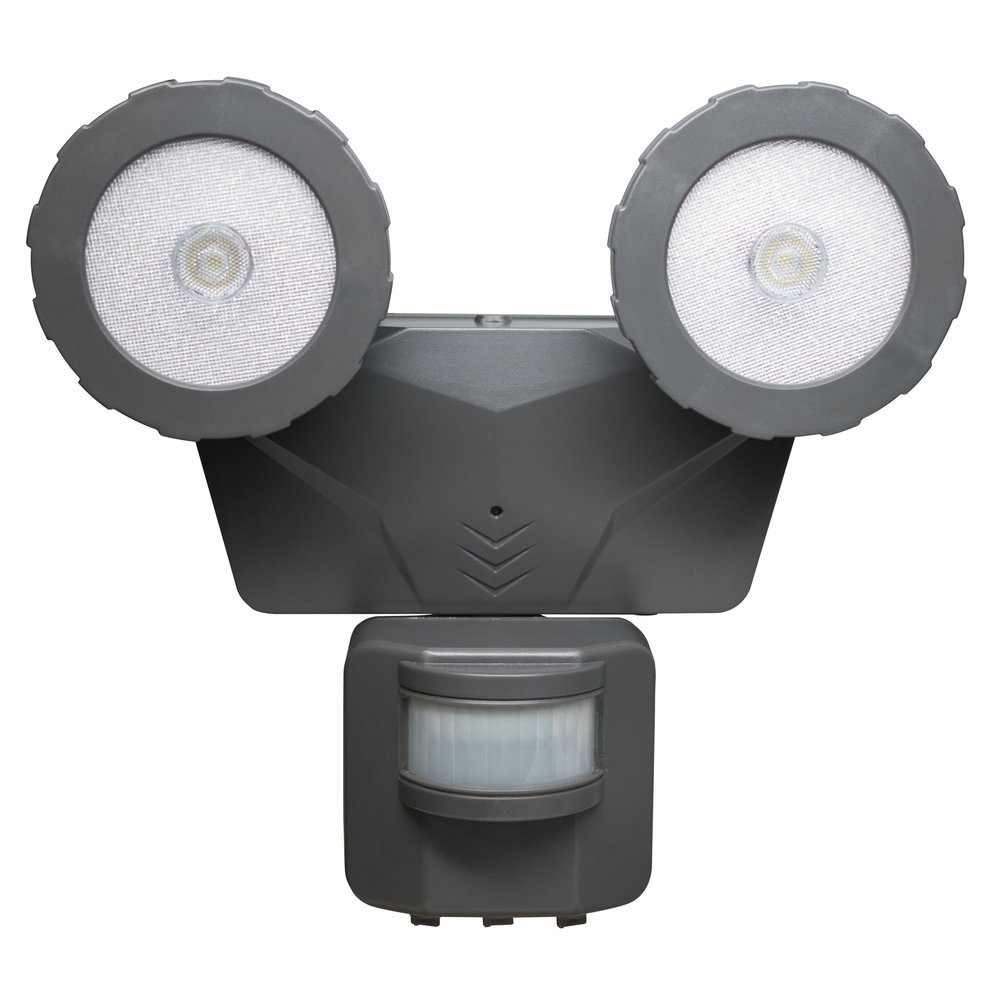 NL-DSG2 Solar Security Light, Front