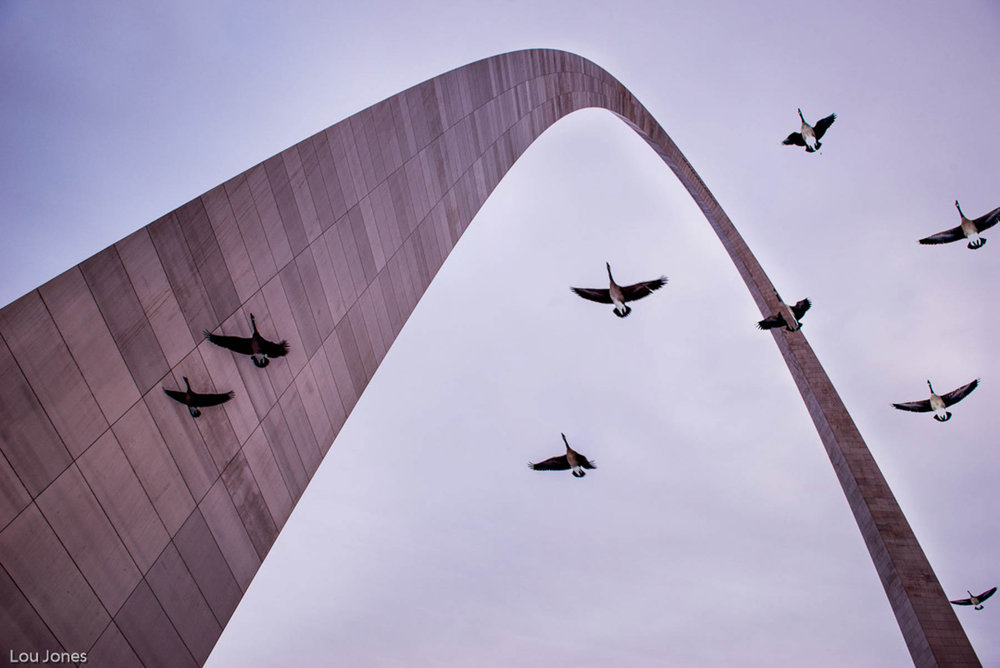 Gateway-Arch.jpg