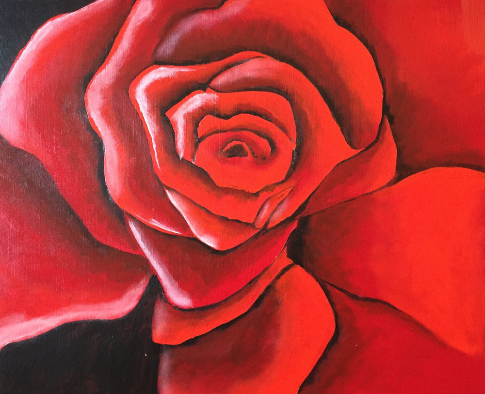 Study-Of-Rose.jpg
