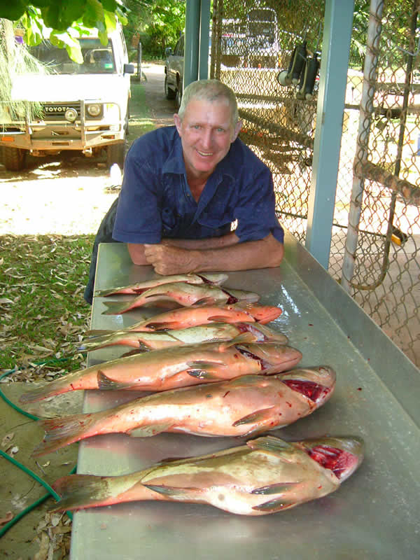 Catching Nanagui Lockhart River - Cape York