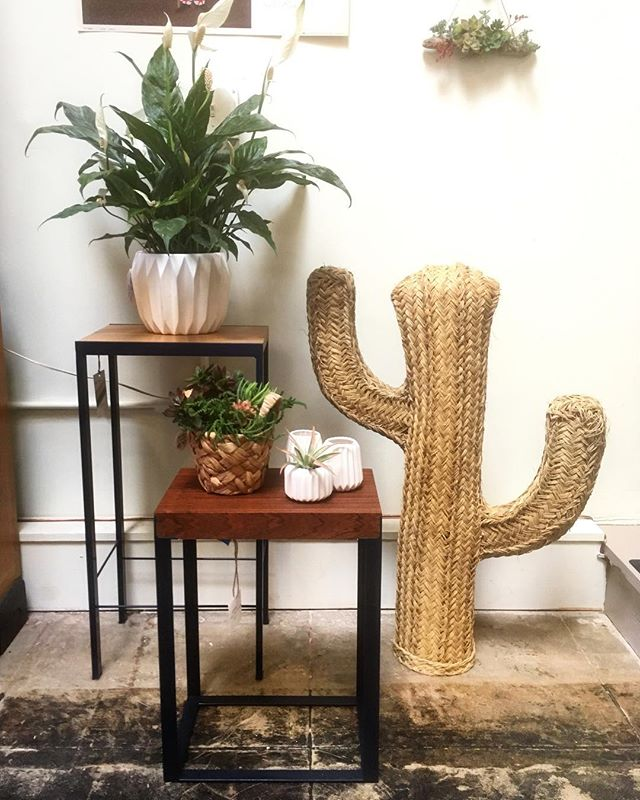 Got some handmade plant stands available at @goldandrust in Oakland. Perfect for that little corner that's been missing something. There's also a new batch of little succulents for your collection from @westwindsucculents nursery, as well as arrangements and driftwood wall hangings. .................... Contact us for custom orders and have something made just for you...........