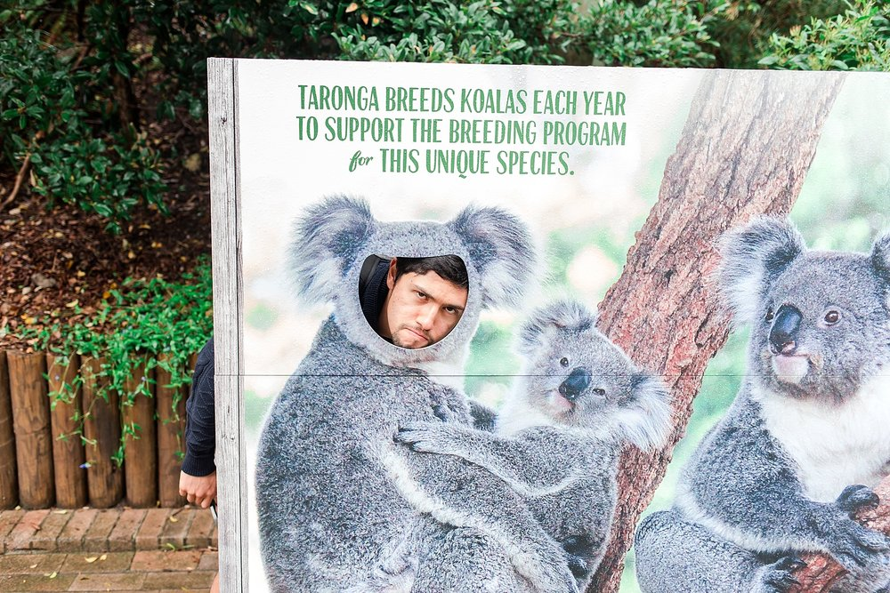 taronga-zoo-sydney-australia_0160.jpg