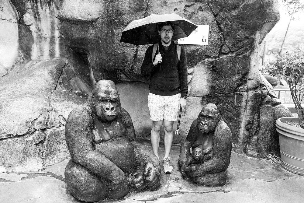 taronga-zoo-sydney-australia_0163.jpg