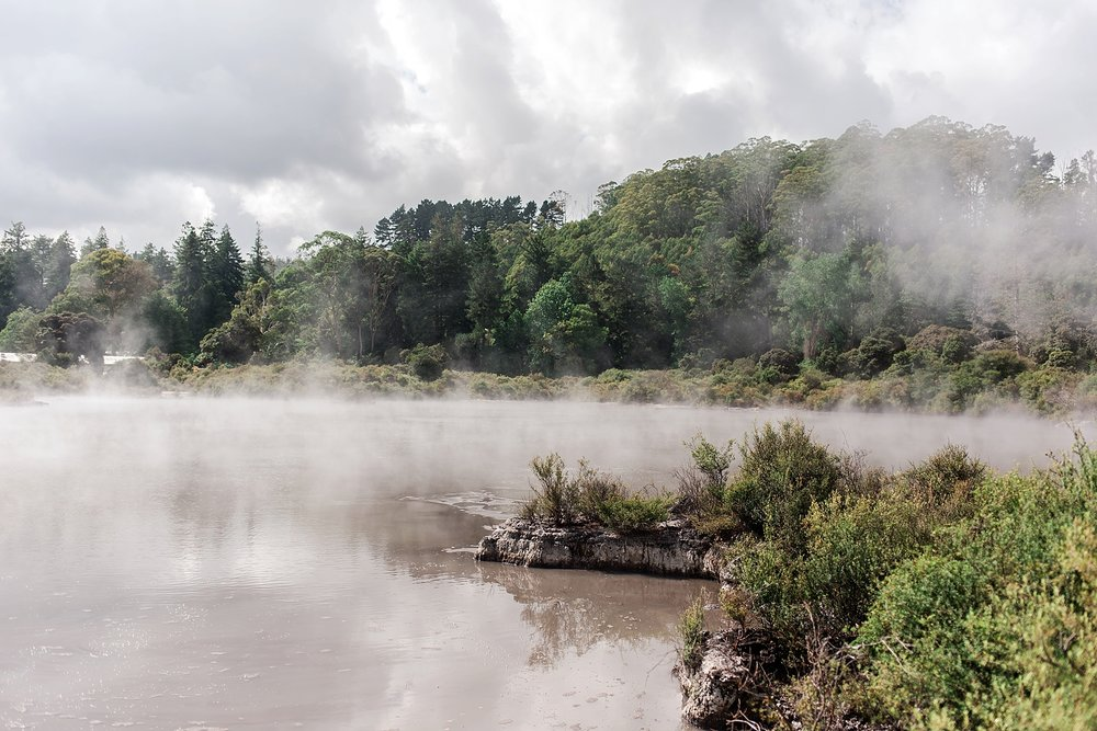 north-island-rotorua-new-zealand-scenery_0206.jpg
