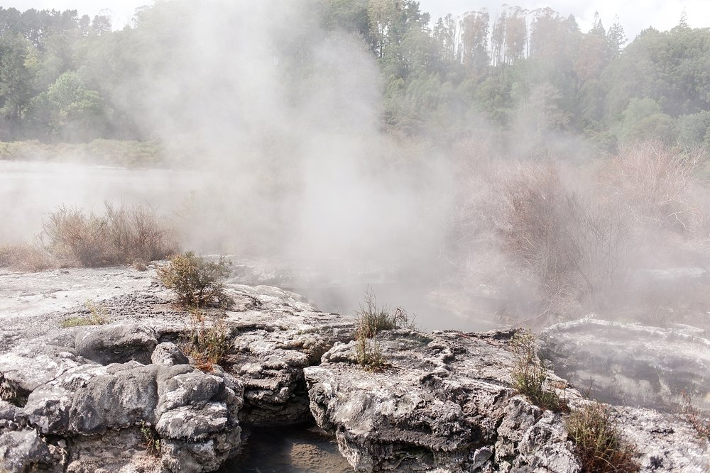 north-island-rotorua-new-zealand-scenery_0207.jpg
