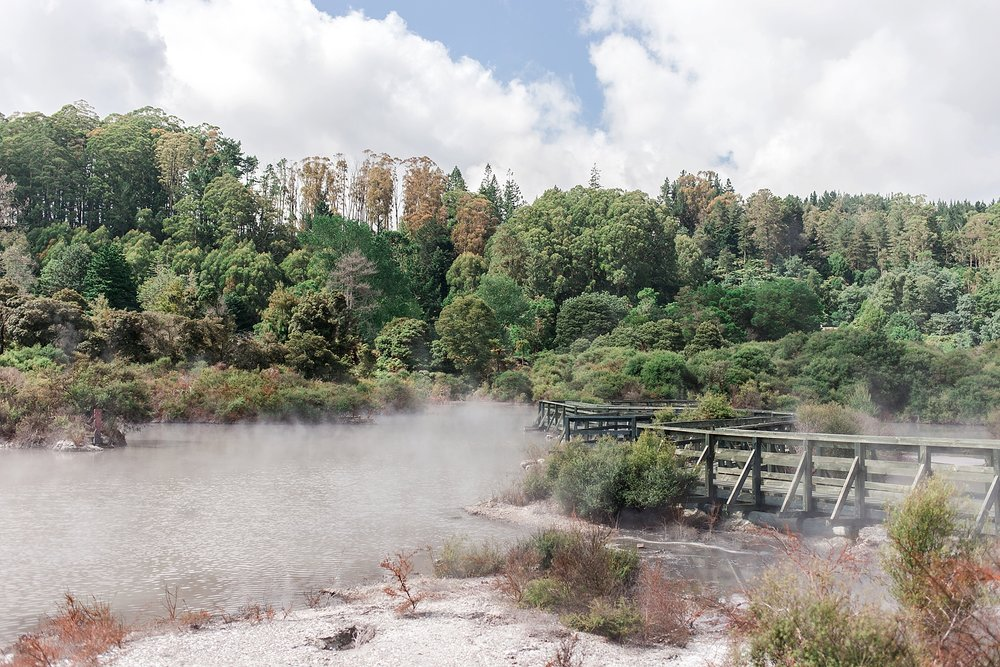 north-island-rotorua-new-zealand-scenery_0210.jpg