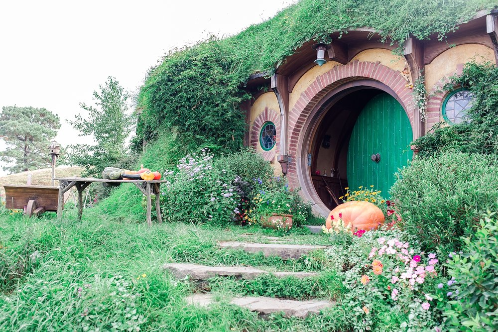 hobbiton-movie-set-matamata-hamilton-north-island-new-zealand-scenery_0251.jpg