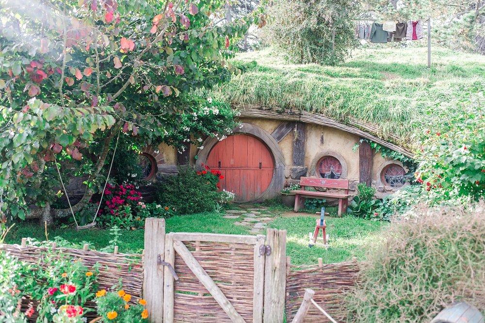 hobbiton-movie-set-matamata-hamilton-north-island-new-zealand-scenery_0269.jpg