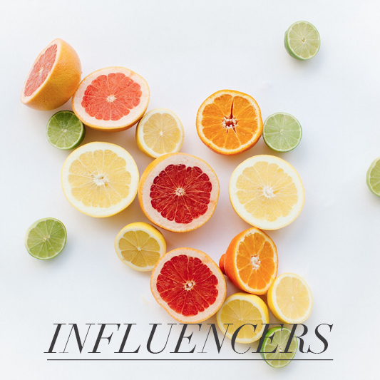 researching and identifying influencers to deliver transparent and authentic brand partnerships while managing and developing the ongoing relationship