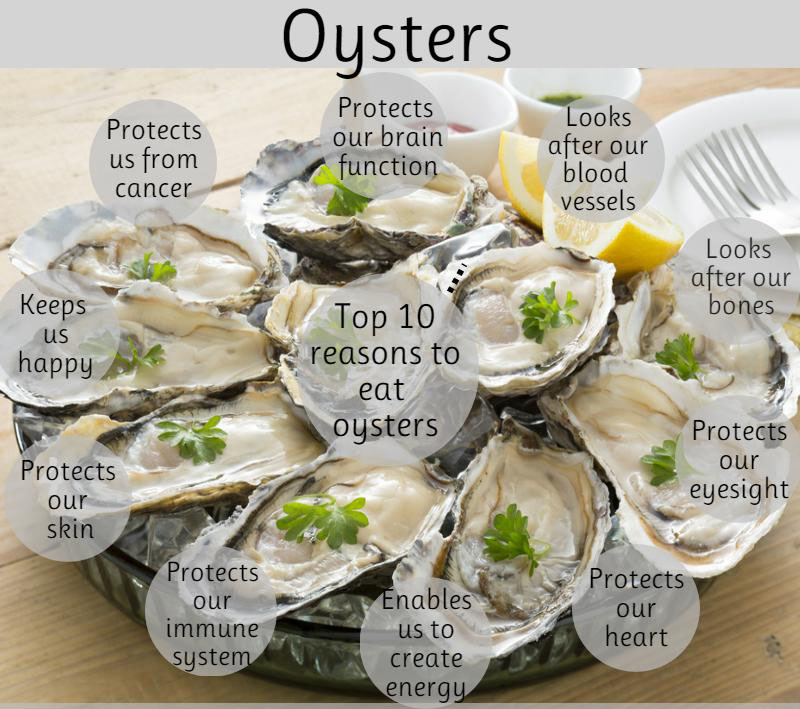 Reasons To Eat Oysters