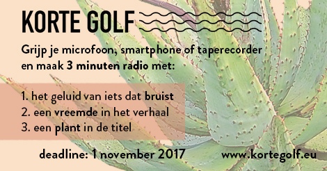 digiflyer korte golf 2017.jpg