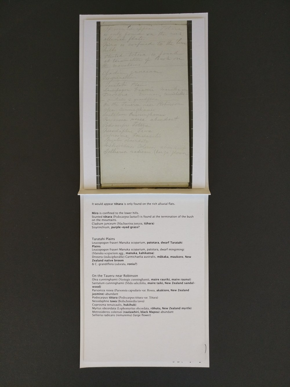 Photo and transcribe of original John Buchanan notes