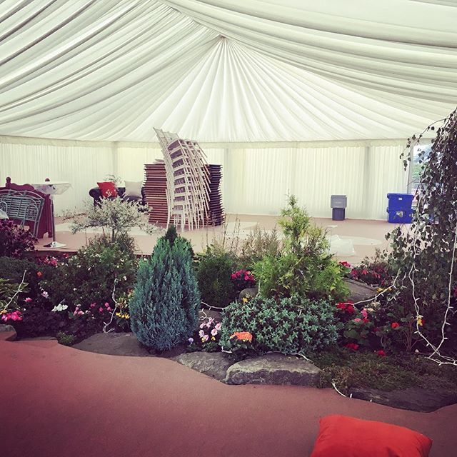 Early bird catches the worm.... We have been up bright and early this morning to style a gorgeous wedding on a farm close to home with help of the resident lamas #roseandleeinteriors #wedding #weddingstyling #marquee #lamas #farm #florist #excited #stylist #events