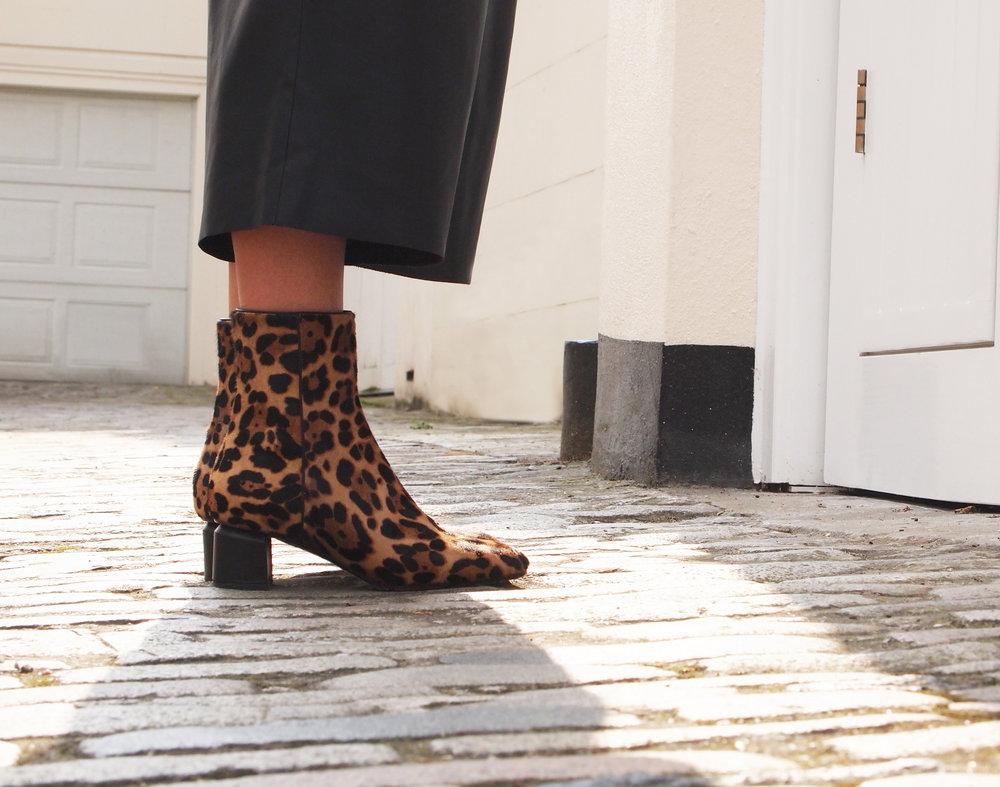 Leopard Q55.jpg