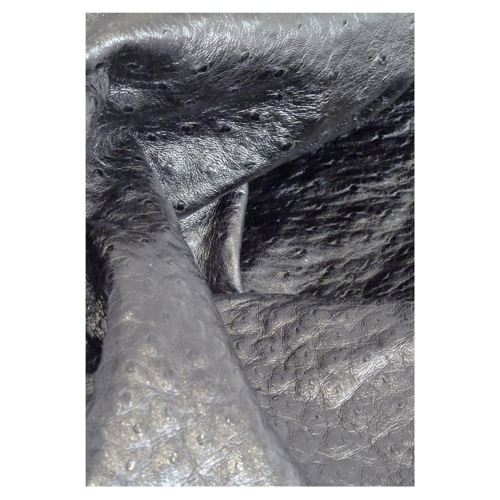Ostrich skin.jpg