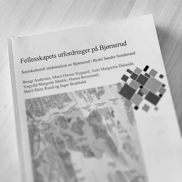 På lag med forskere fra OsloMet, har Astri i Kåmmån gjort en stedsanalyse av delbydelen Bjørnerud. Dette er på oppdrag fra Bydel Søndre Nordstrand i Oslo Kommune. Rapporten kan lastes ned på nett, se link i bio.