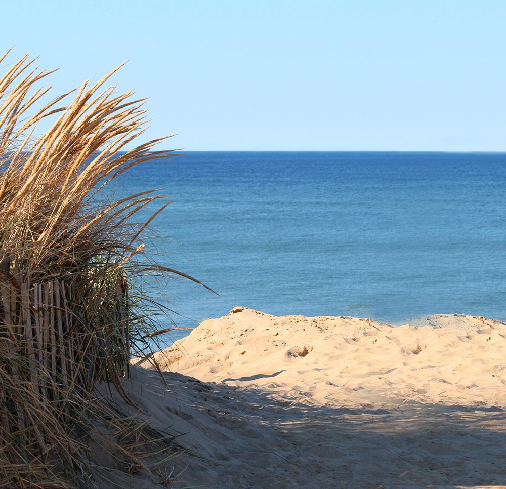 CAPE BEACH.jpg