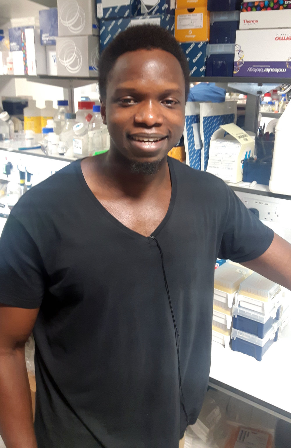 Mphatso 'Pat' Kalemera - PhD StudentI graduated from the University of York in 2014 with a BSc in Biochemistry before undertaking an MRes in Infection Immunology at the University of Liverpool where I took up projects in the pathogenesis of bacterial pneumonia and viral cancers. I recently joined the Grove lab through the UCL-Birkbeck MRC DTP programme. My research questions chiefly concern the efficiency and kinetics of virus entry by Hep C. Firstly, does Hep C glycoprotein sensitivity to antibody correlate with the speed and efficiency of virus entry? Secondly, how does the availability of receptors at the cell surface influence entry kinetics? Lastly, does limiting receptor availability promote antibody-mediated neutralization? I am utilizing some dangerous category 3 virus infection assays and some cool fluorescence microscopy to address these questions.