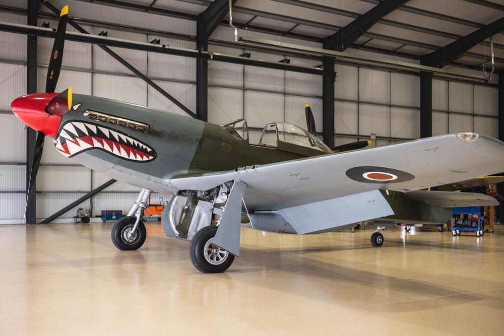 P51-Mustang-Shark_6.jpg