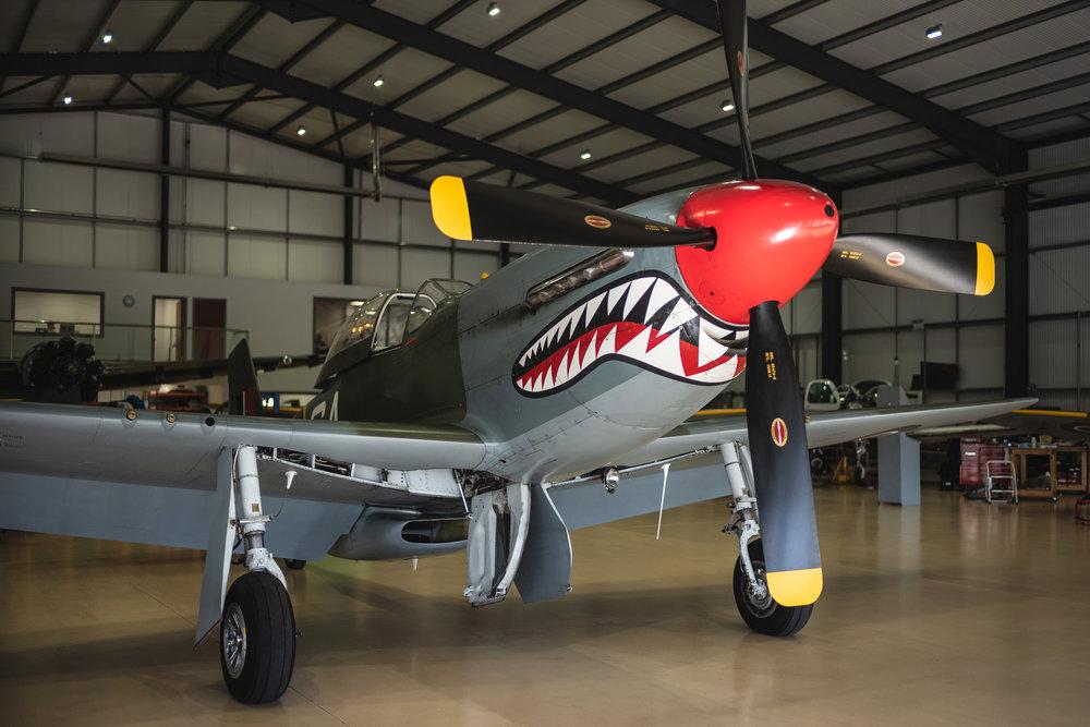 P51-Mustang-Shark_16.jpg