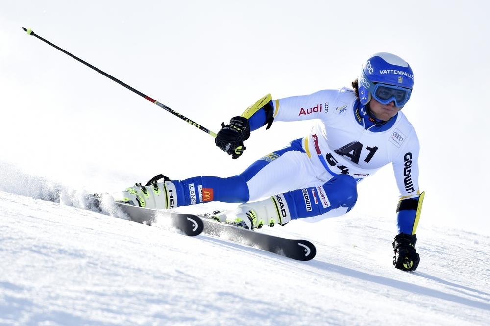 Mattias Rönngren & Felix Monsén