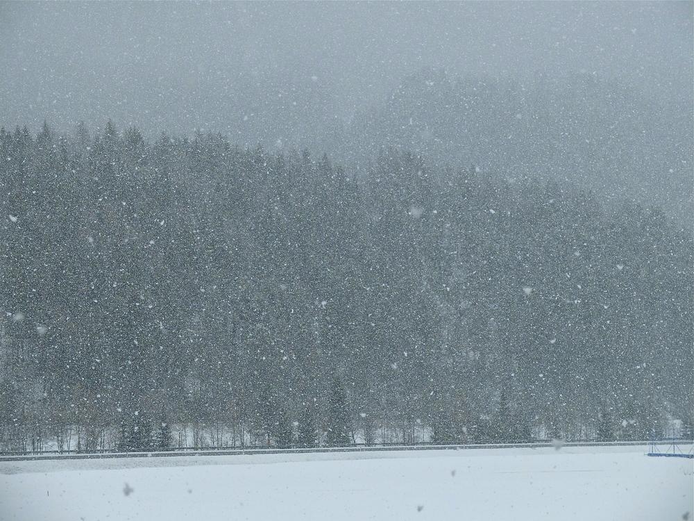 Snö i Kranjska