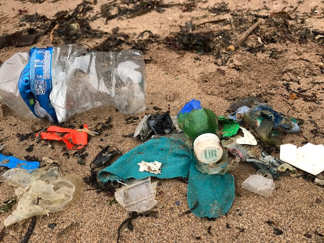Plastic rubbish collected from what first looks like pristine rock pools in Dunmore East, Ireland. Credit: A Plastic Planet