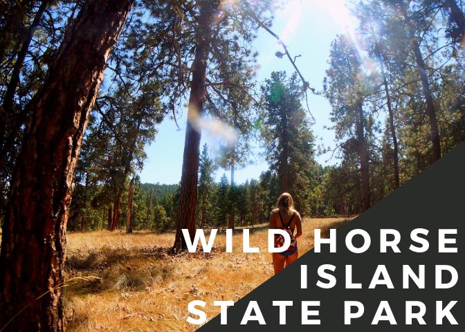 wildhorse island.png