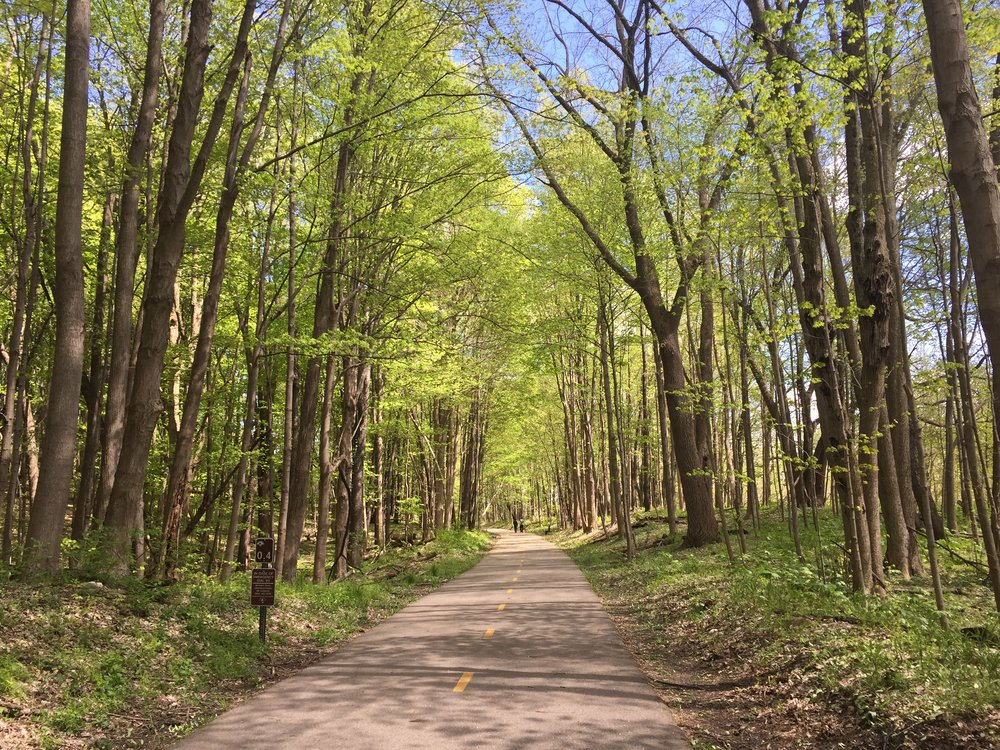 A beautiful day on the Kal-Haven Trail in southwest Michigan [Ayla Hull].