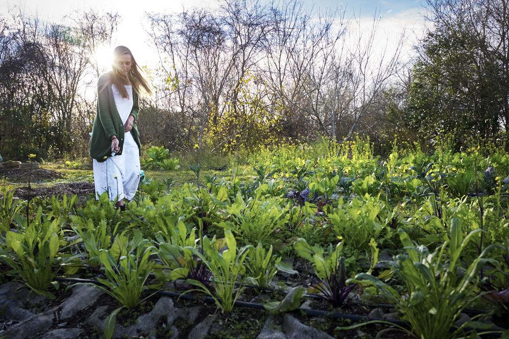 Farmer Becca at the Sown & Grown production farm, 2015. Photo courtesy of Brendan Lekan.
