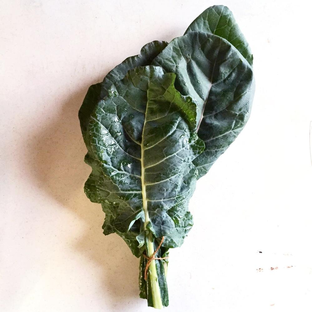 BROCCOLI GREENS (like collard greens)